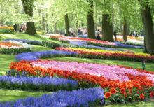 おすすめオランダ観光