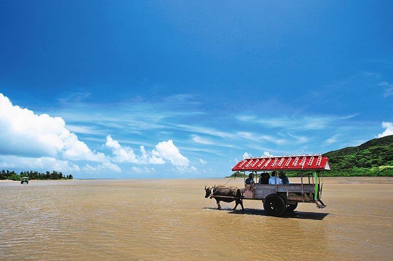 西表島の由布島(水牛車)