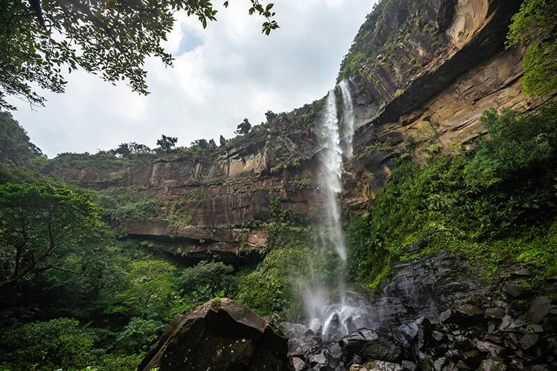 西表島のピナイサーラの滝